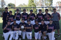 Delphic Orange Baseball 7th grade